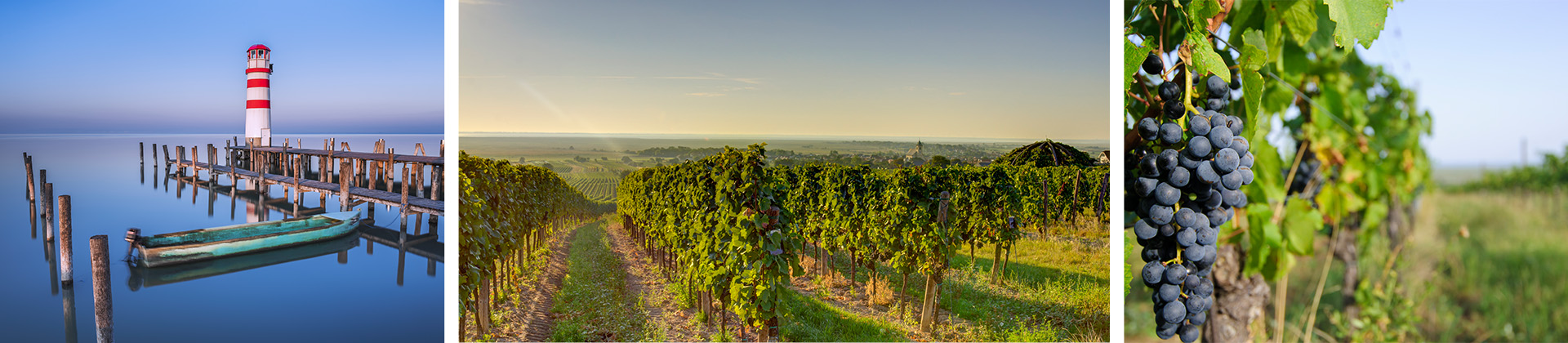 Weinanbaugebiete und Seen im Burgenland