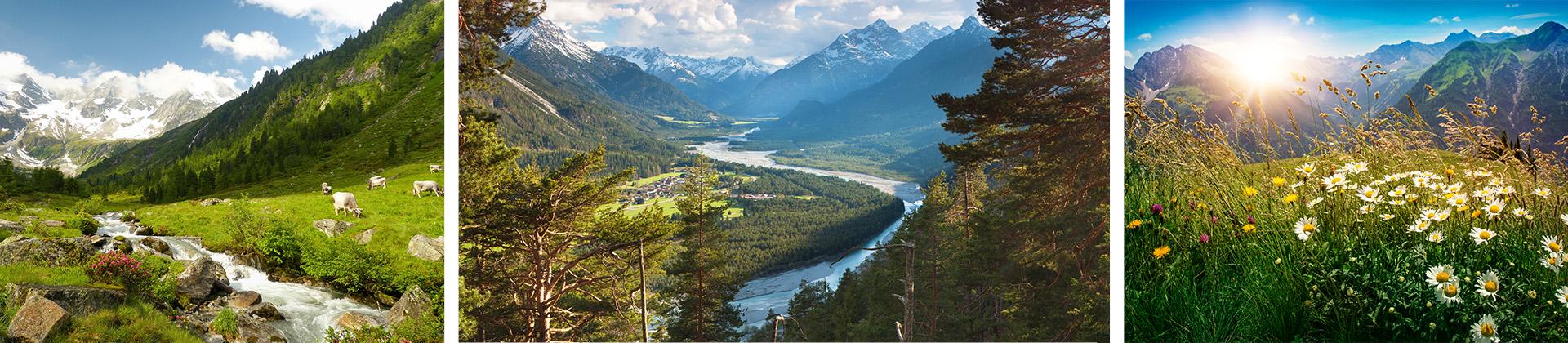 Vorarlberger Natur im Frühling