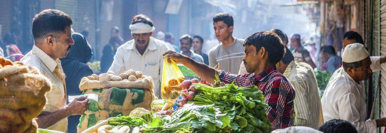 urlaubsguru.de_reisen-durch-indien-erfahrungsbericht3