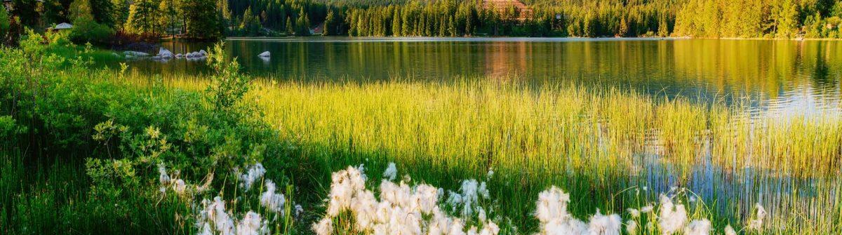 Majestic-mountain-lake-in-National-Park-High-Tatra.-Strbske-pleso-Slovakia-Europe-shutterstock_314155031-1