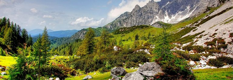 bischofsmutze-3486533_1920-filzmoos-salzburger-land