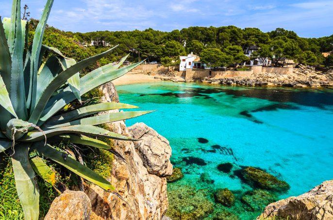 Agave-palnt-beach-bay-azure-turquoise-sea-water-hill-pine-tree-Cala-Gat-Majorca-island-Spain-shutterstock_143322982-2