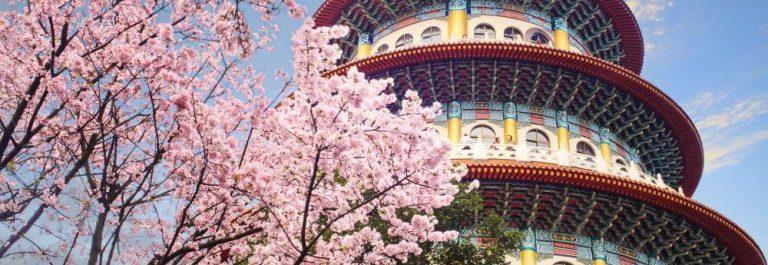 Sakura_Taiwan_Taipei_shutterstock_701954968