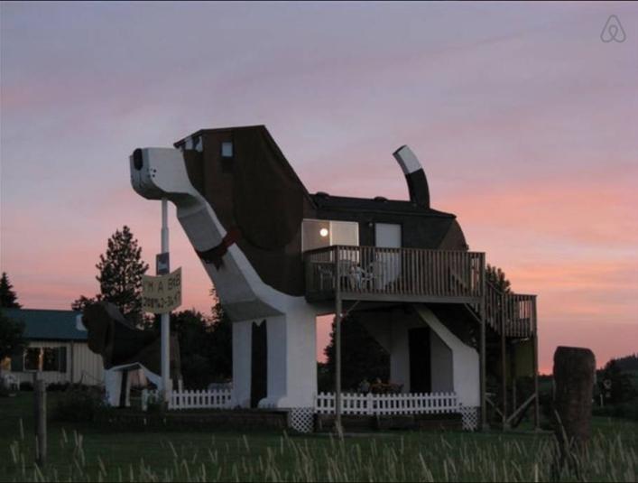 hunde hotel